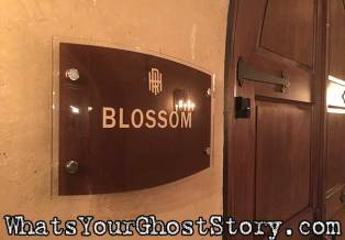 RooseveltBlossomBallroom-Haunted